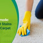 Kelly Green Club - From Easy To Expert-mode How To Get Stains From Your Carpet